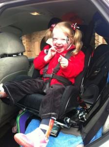 variety car seat